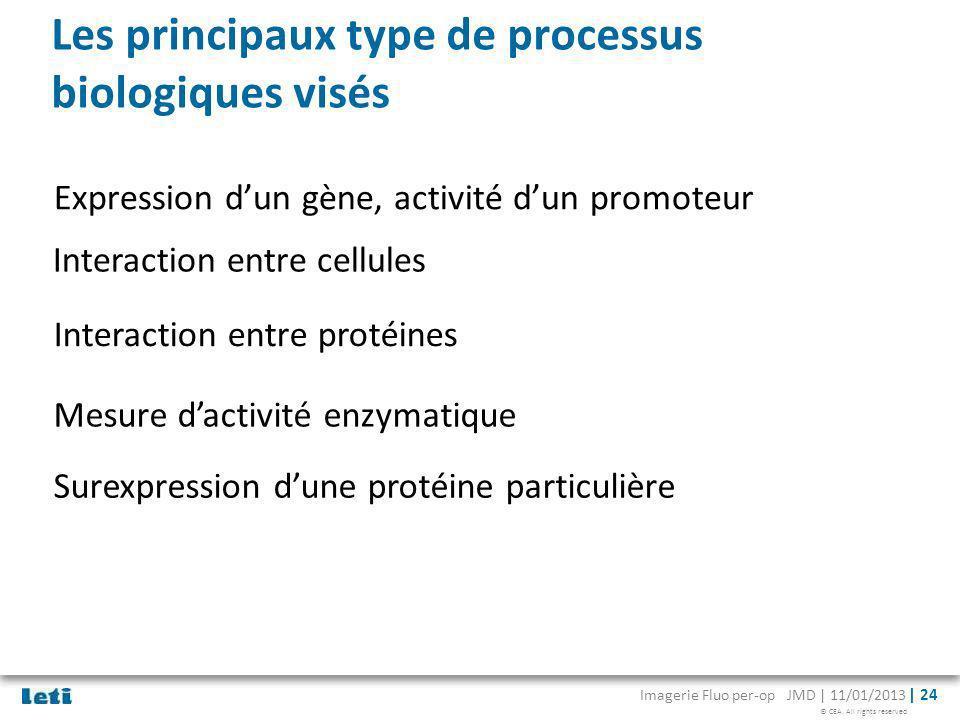 Les principaux type de processus biologiques visés