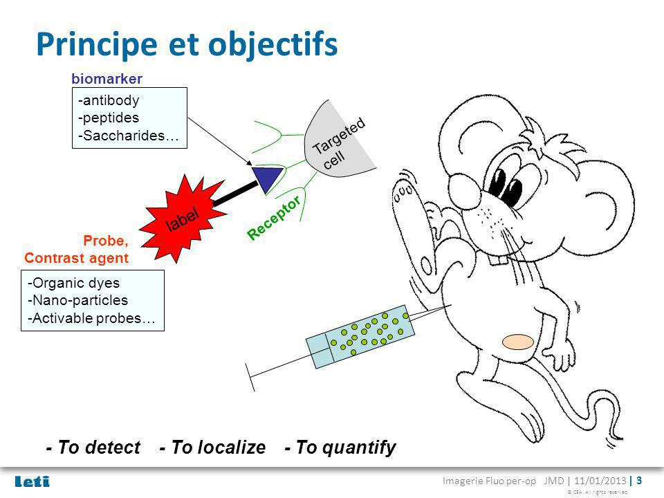 Principe et objectifs - To detect - To localize - To quantify label