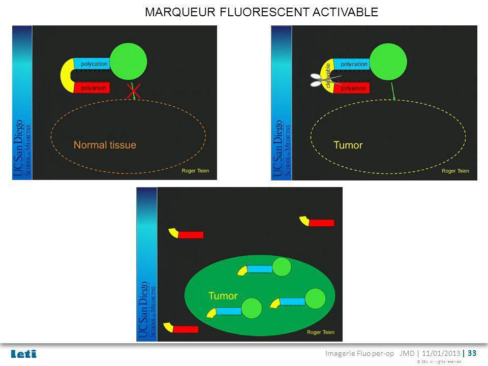 MARQUEUR FLUORESCENT ACTIVABLE