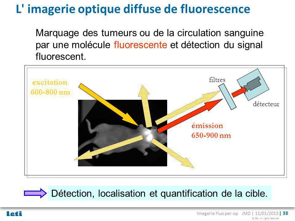 L imagerie optique diffuse de fluorescence