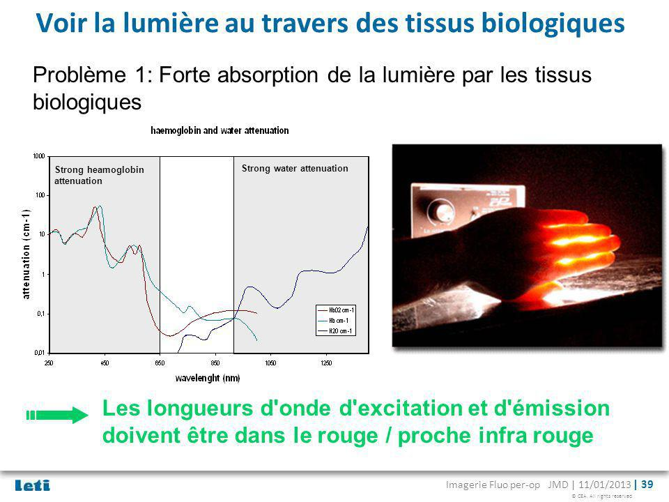 Voir la lumière au travers des tissus biologiques