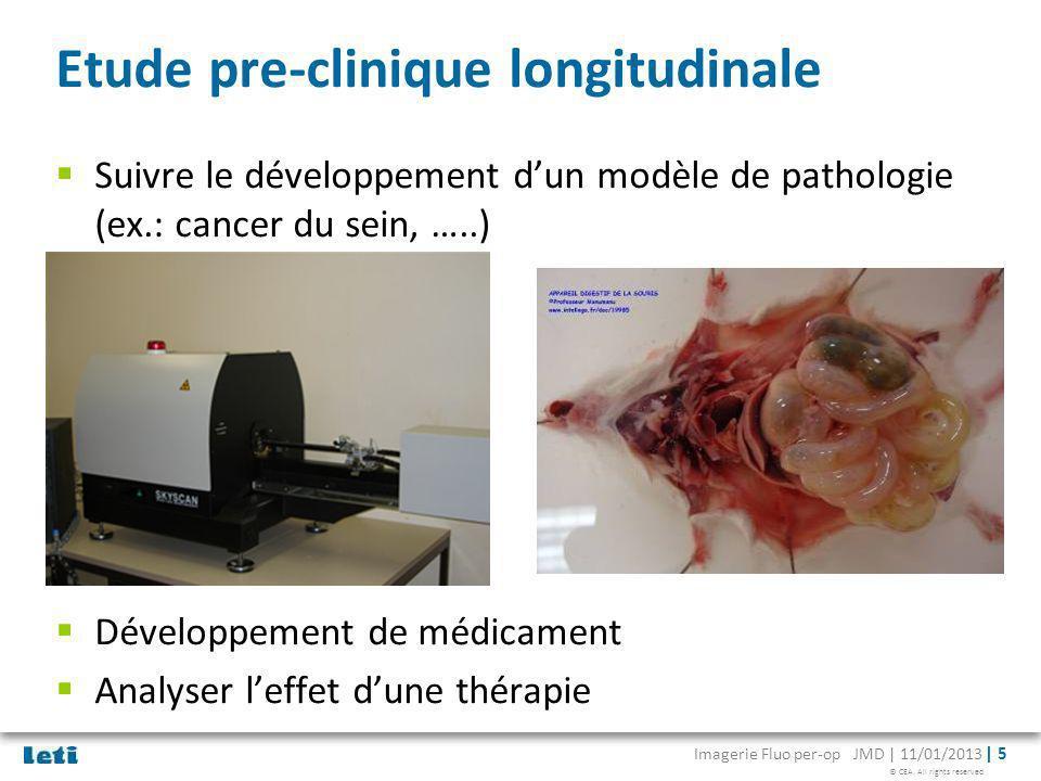 Etude pre-clinique longitudinale