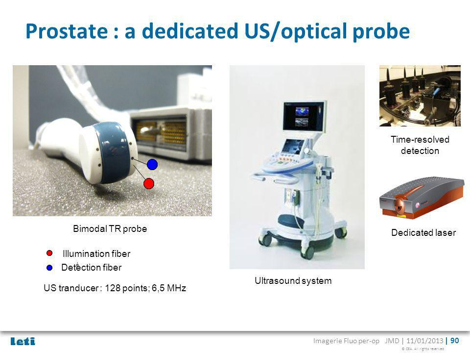Prostate : a dedicated US/optical probe