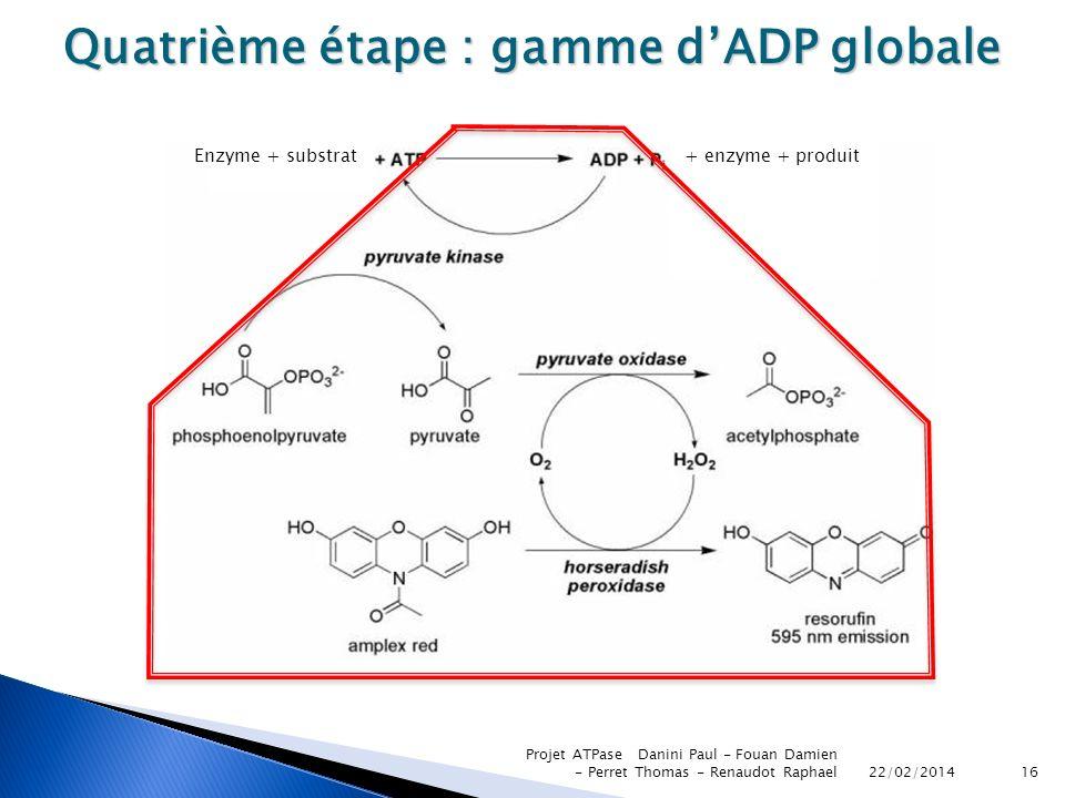 Quatrième étape : gamme d'ADP globale