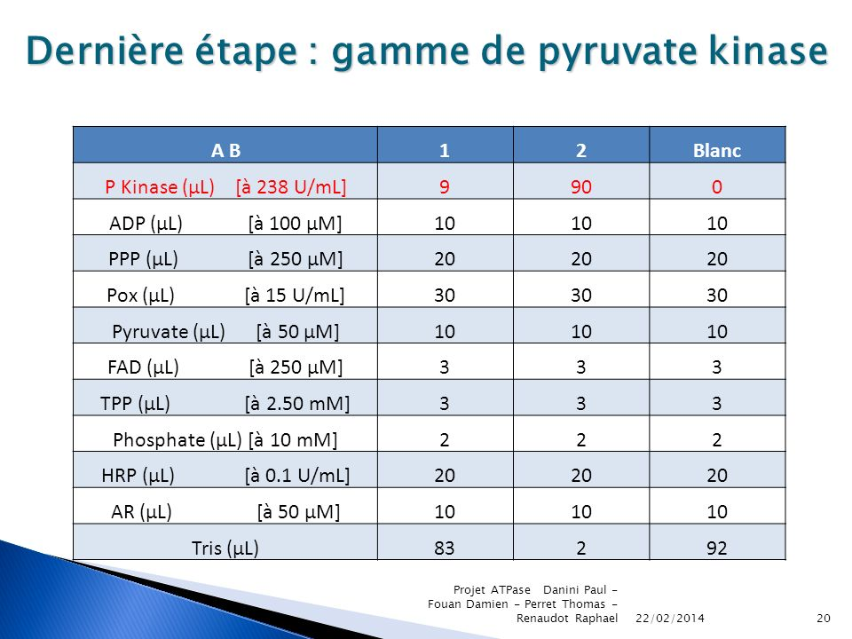 Dernière étape : gamme de pyruvate kinase