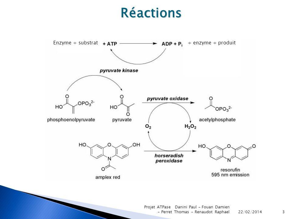 Réactions Enzyme + substrat + enzyme + produit