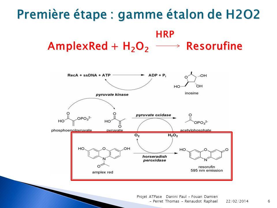Première étape : gamme étalon de H2O2 AmplexRed + H2O2 Resorufine