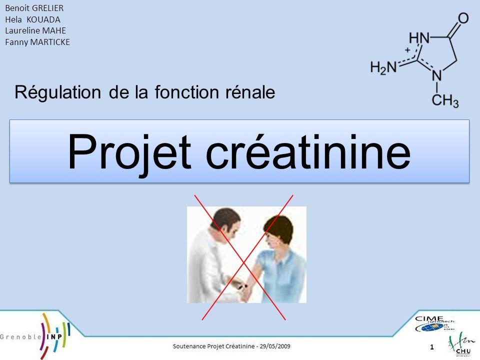 Projet créatinine Régulation de la fonction rénale Benoit GRELIER