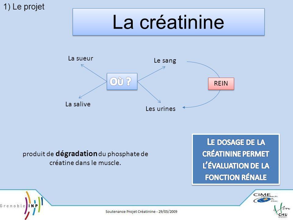 1) Le projet La créatinine. Où Le sang. La sueur. La salive. Les urines. REIN.