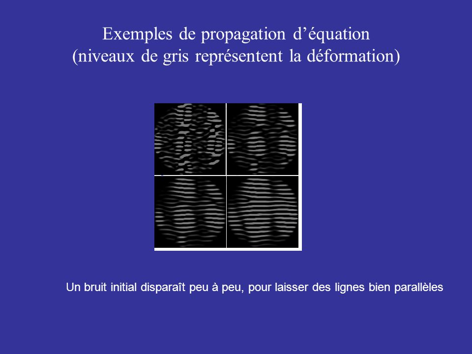 Exemples de propagation d'équation (niveaux de gris représentent la déformation)