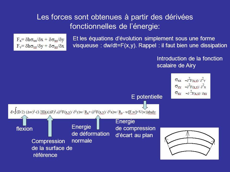 Les forces sont obtenues à partir des dérivées fonctionnelles de l'énergie:
