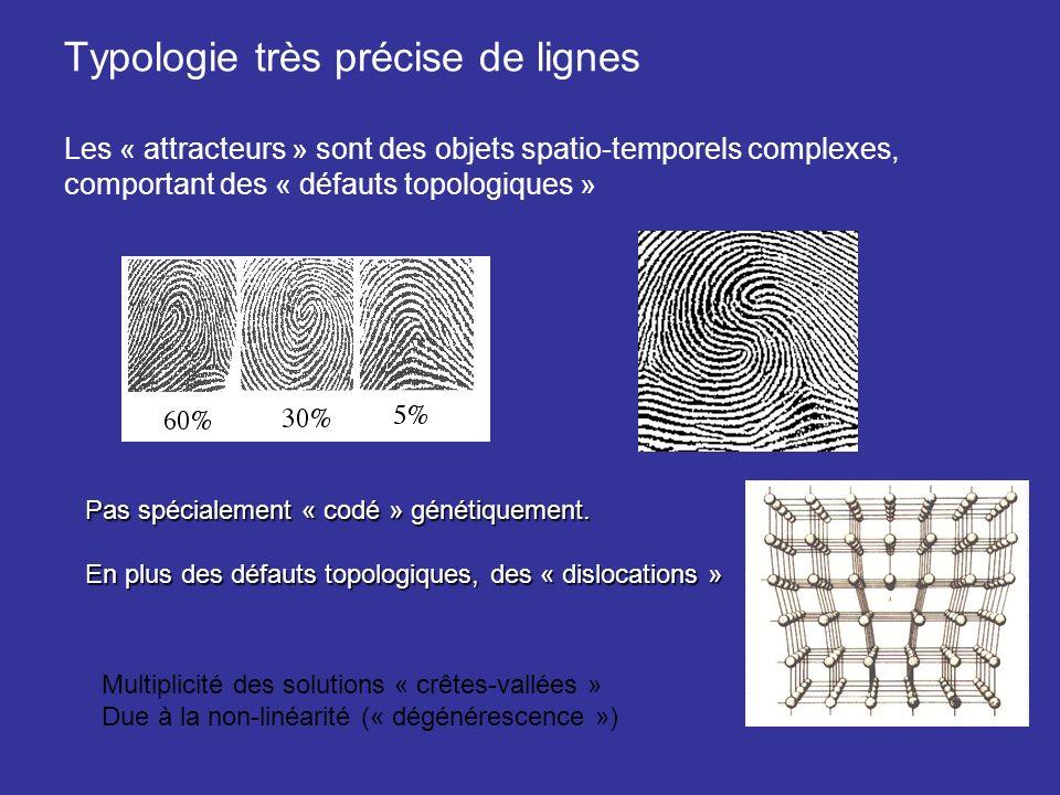 Typologie très précise de lignes Les « attracteurs » sont des objets spatio-temporels complexes, comportant des « défauts topologiques »