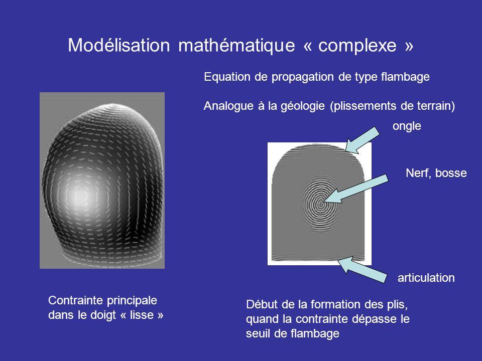 Modélisation mathématique « complexe »