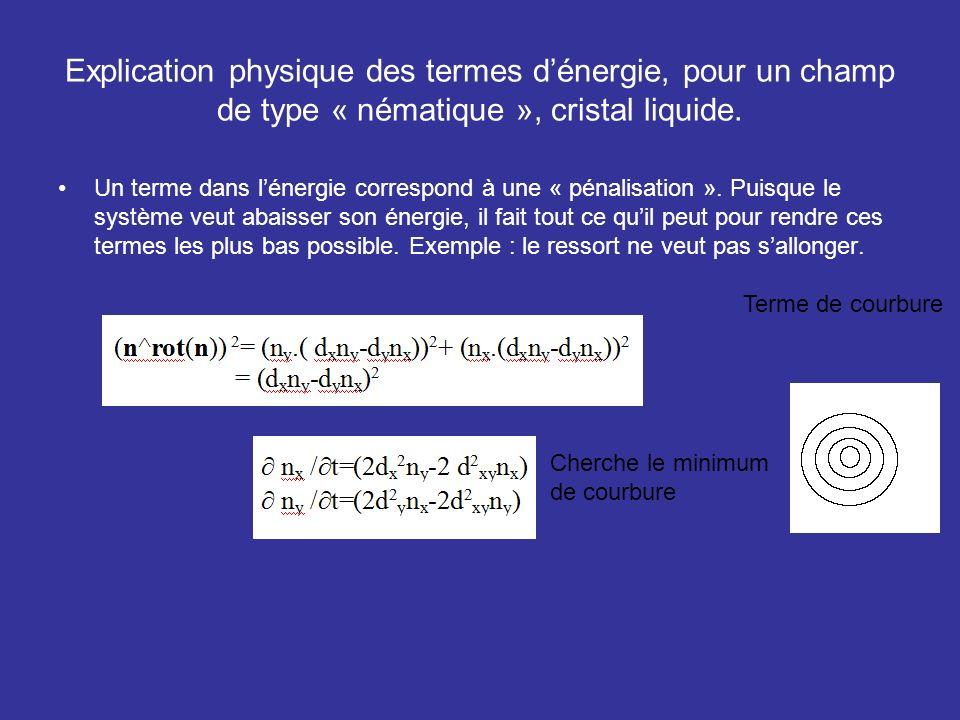Explication physique des termes d'énergie, pour un champ de type « nématique », cristal liquide.