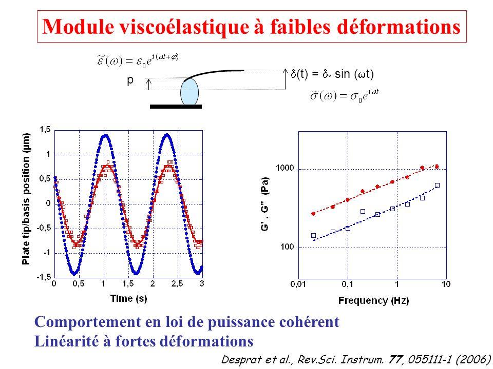 Module viscoélastique à faibles déformations