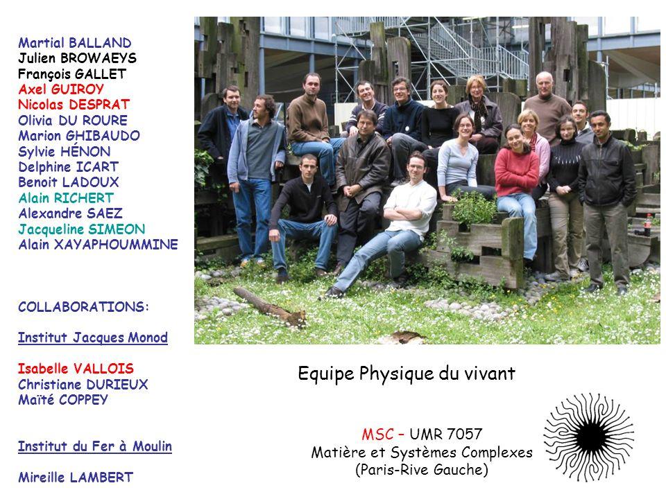 Matière et Systèmes Complexes