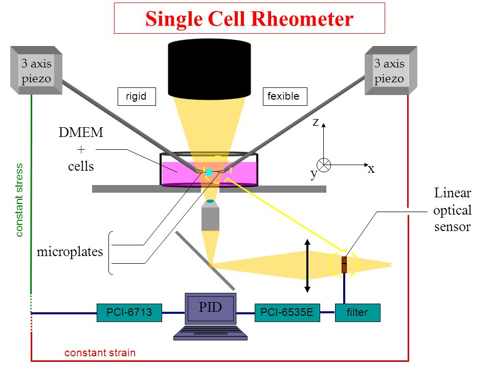 Single Cell Rheometer z DMEM + cells x y Linear optical sensor