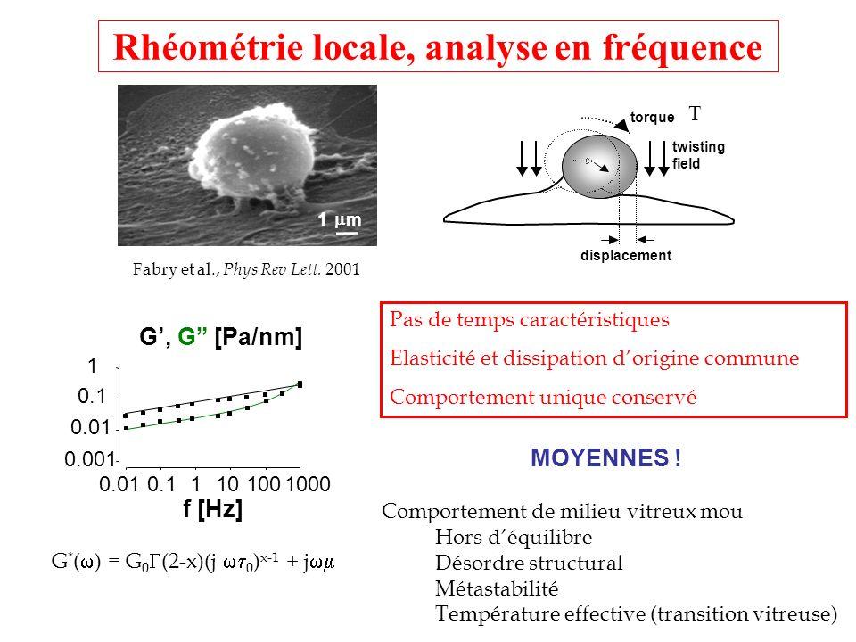 Rhéométrie locale, analyse en fréquence