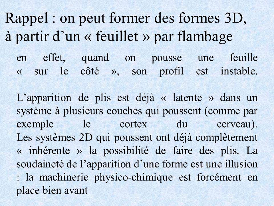 Rappel : on peut former des formes 3D,