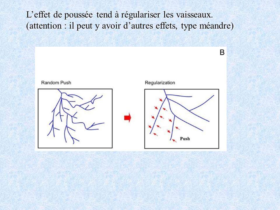 L'effet de poussée tend à régulariser les vaisseaux.