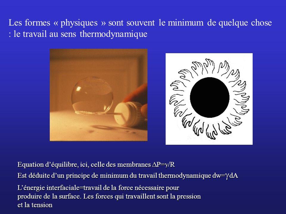 Les formes « physiques » sont souvent le minimum de quelque chose : le travail au sens thermodynamique
