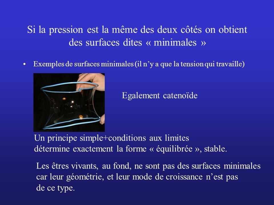 Si la pression est la même des deux côtés on obtient des surfaces dites « minimales »
