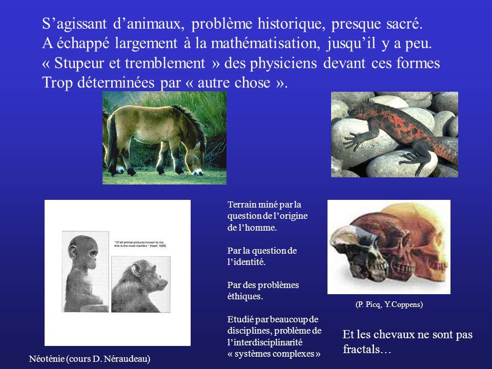 S'agissant d'animaux, problème historique, presque sacré.