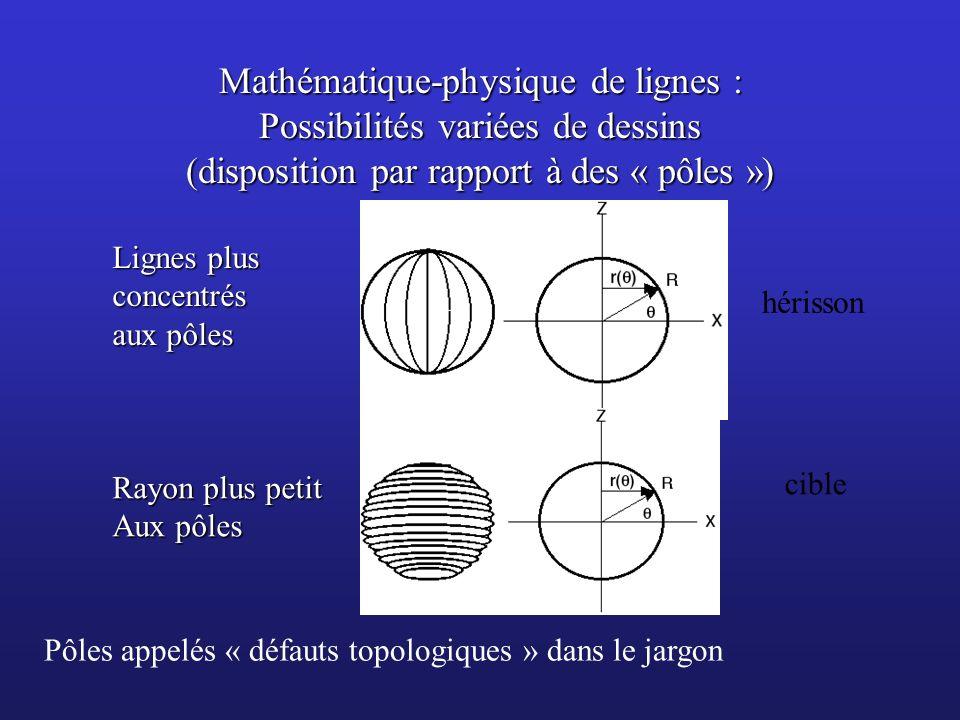 Mathématique-physique de lignes : Possibilités variées de dessins (disposition par rapport à des « pôles »)