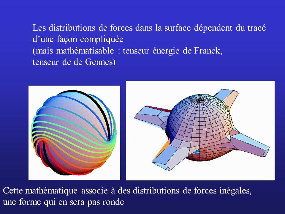 Les distributions de forces dans la surface dépendent du tracé