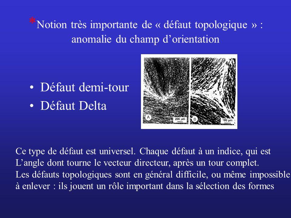 *Notion très importante de « défaut topologique » : anomalie du champ d'orientation
