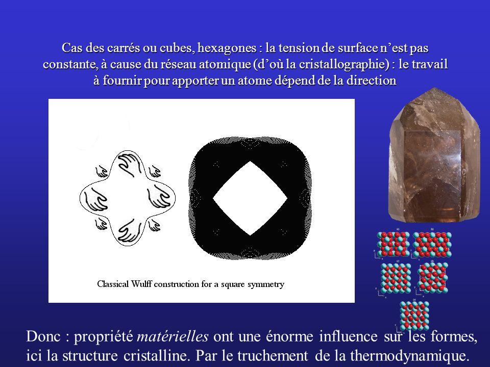 Donc : propriété matérielles ont une énorme influence sur les formes,