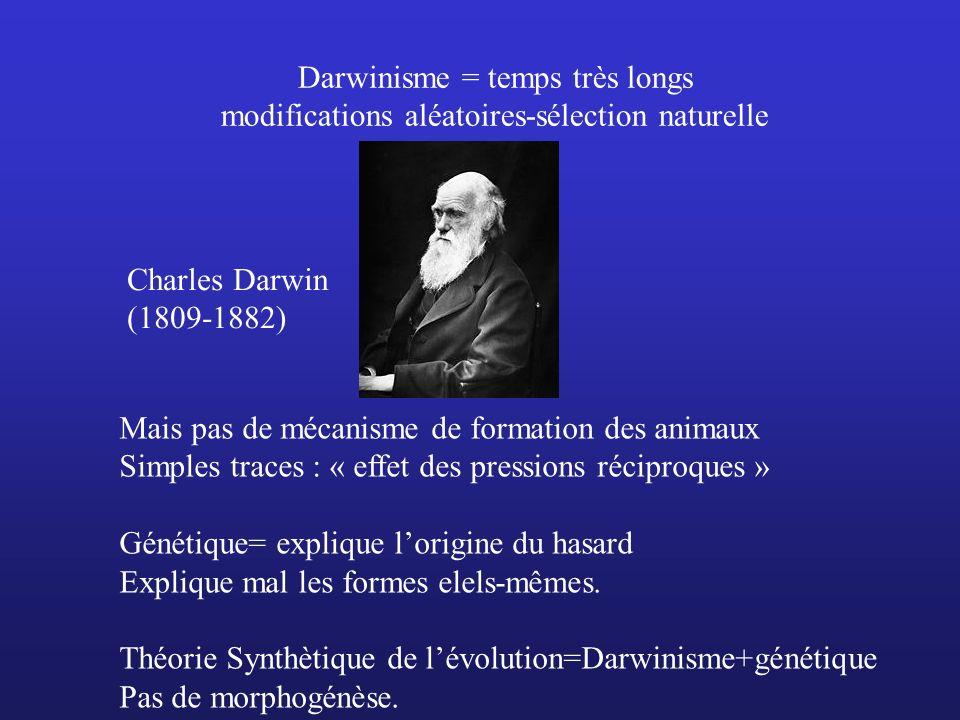 Darwinisme = temps très longs modifications aléatoires-sélection naturelle