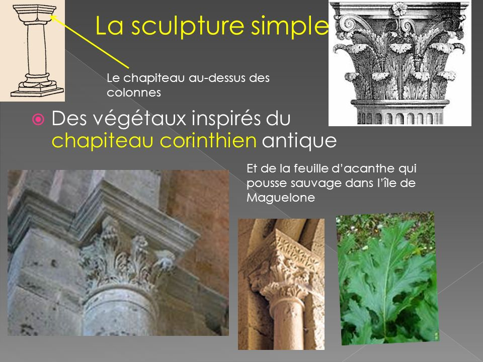 La sculpture simple Le chapiteau au-dessus des colonnes. Des végétaux inspirés du chapiteau corinthien antique.
