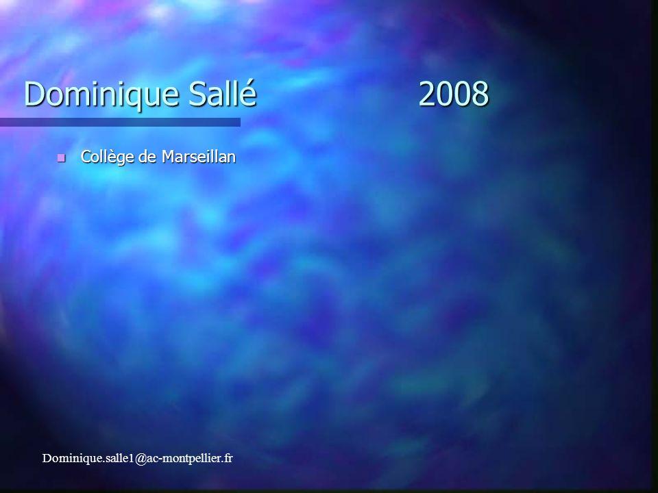 Dominique Sallé 2008 Collège de Marseillan