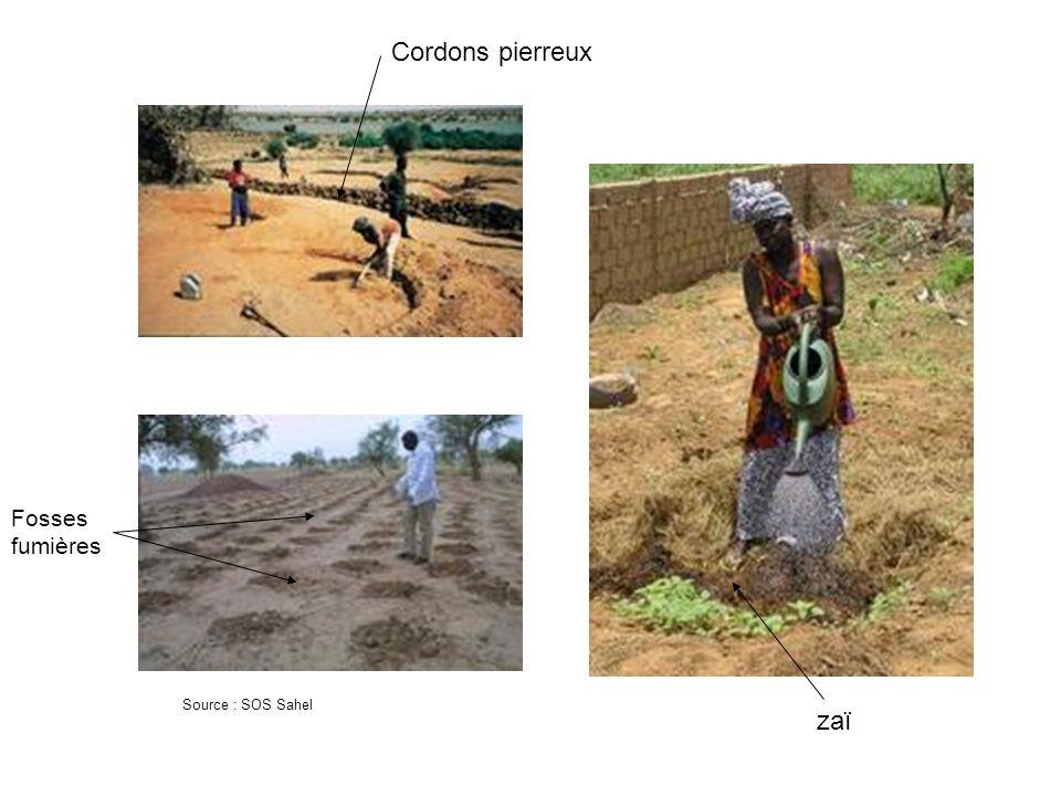 Cordons pierreux Fosses fumières Source : SOS Sahel zaï