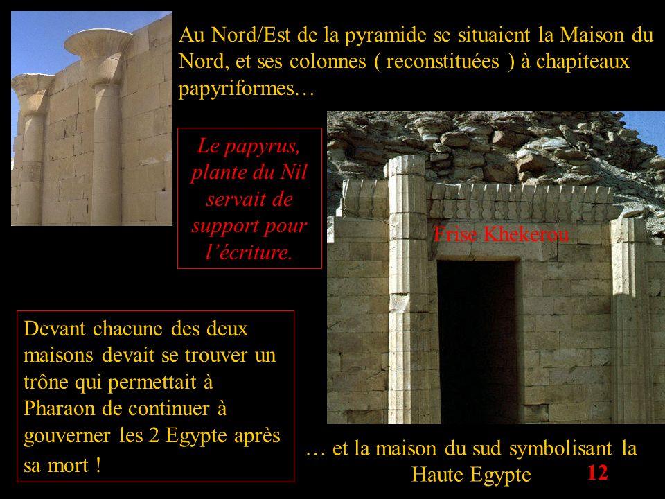 Le papyrus, plante du Nil servait de support pour l'écriture.