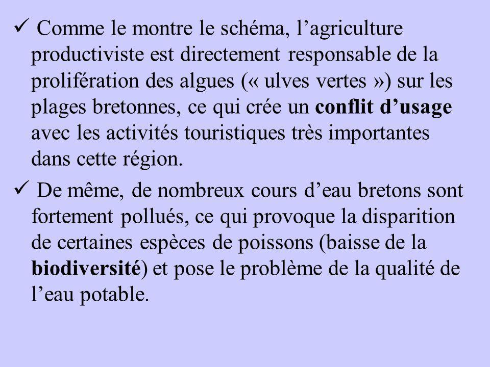 Comme le montre le schéma, l'agriculture productiviste est directement responsable de la prolifération des algues (« ulves vertes ») sur les plages bretonnes, ce qui crée un conflit d'usage avec les activités touristiques très importantes dans cette région.