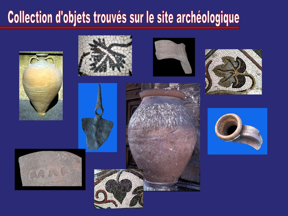 Collection d objets trouvés sur le site archéologique