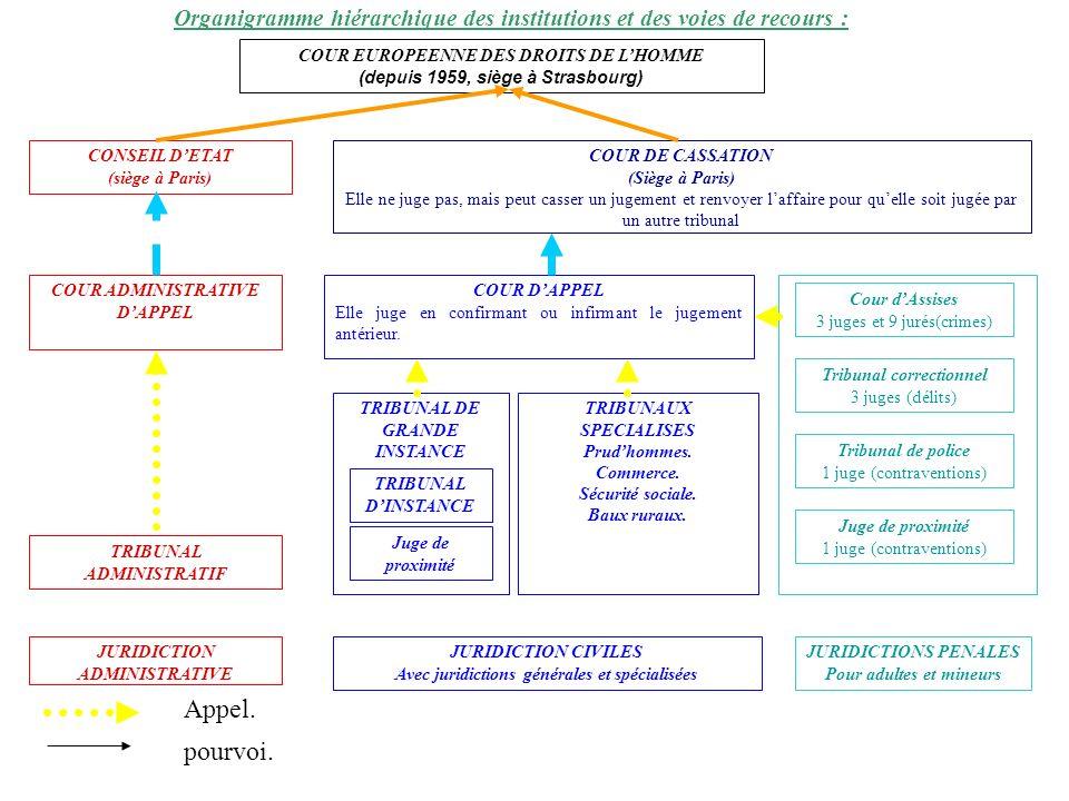 Organigramme hiérarchique des institutions et des voies de recours :