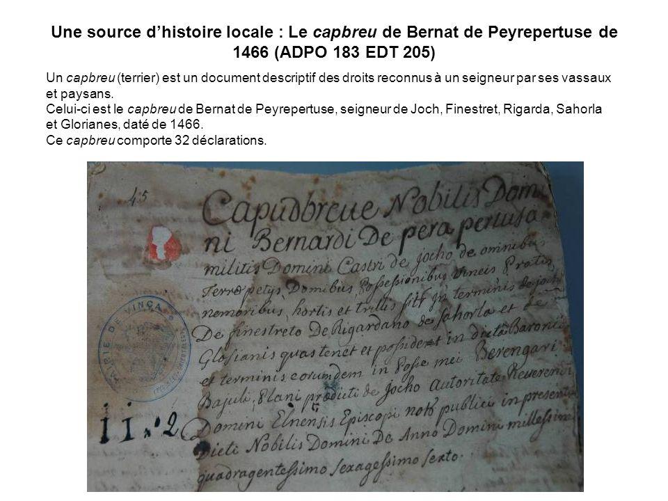 Une source d'histoire locale : Le capbreu de Bernat de Peyrepertuse de 1466 (ADPO 183 EDT 205)