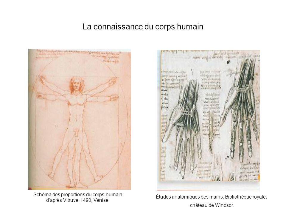 La connaissance du corps humain