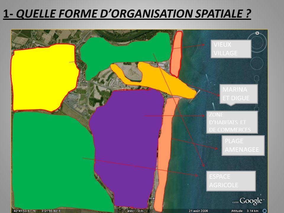 1- QUELLE FORME D'ORGANISATION SPATIALE