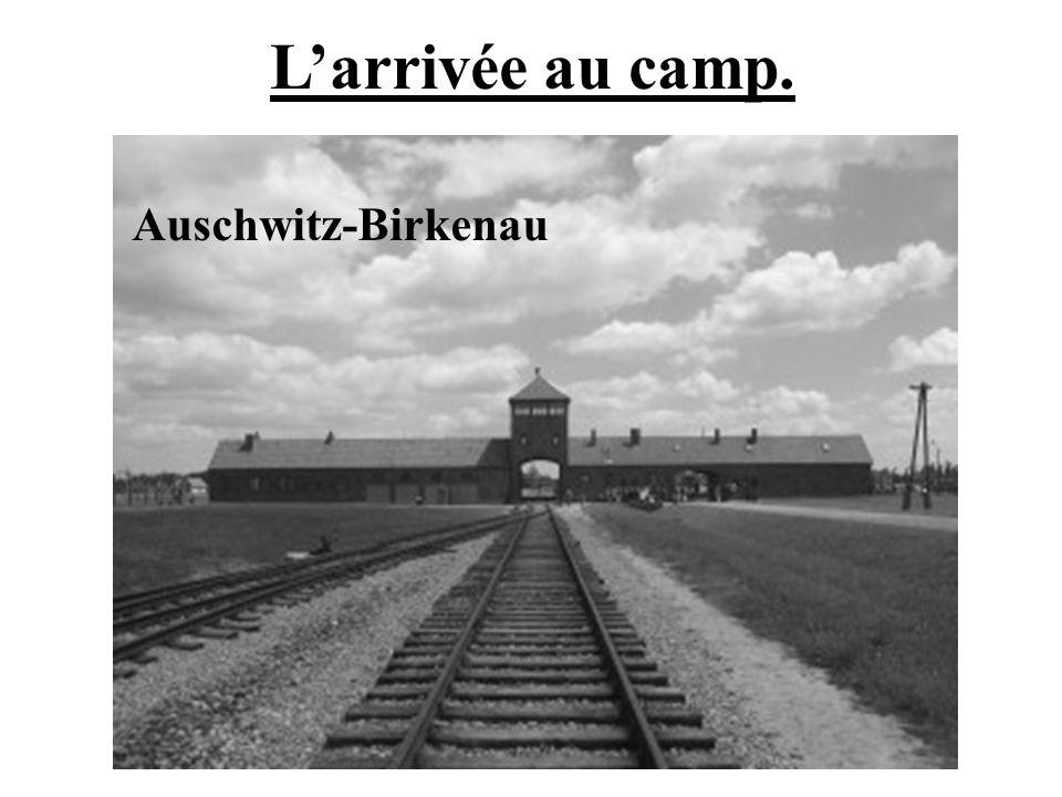 L'arrivée au camp. Auschwitz-Birkenau