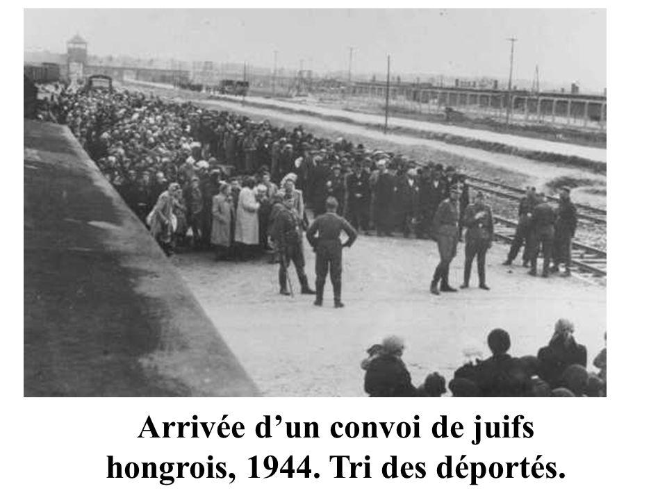 Arrivée d'un convoi de juifs hongrois, 1944. Tri des déportés.