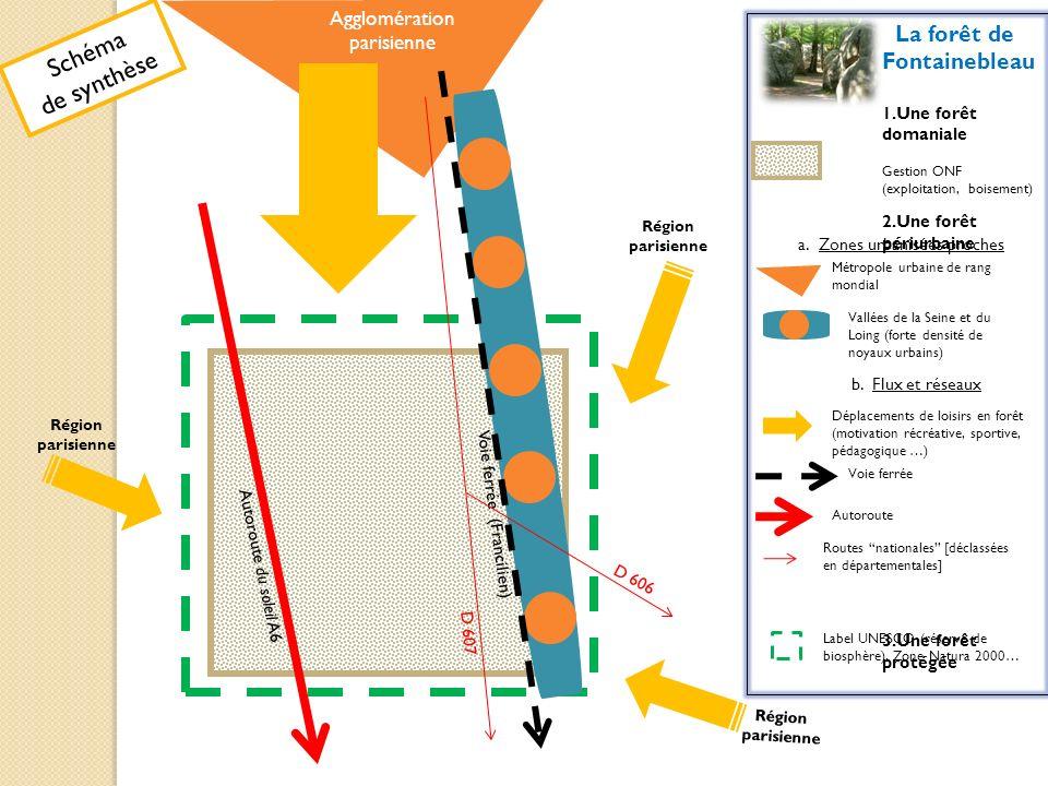 Schéma de synthèse La forêt de Fontainebleau Agglomération parisienne