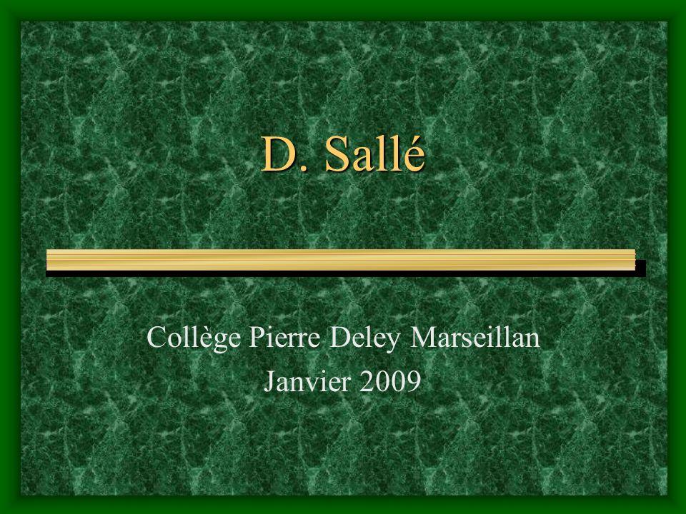 Collège Pierre Deley Marseillan Janvier 2009