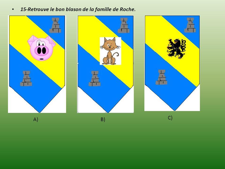 15-Retrouve le bon blason de la famille de Roche.