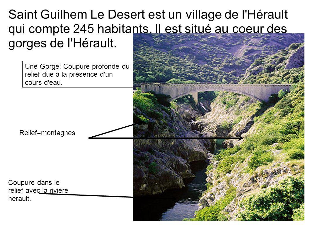 Saint Guilhem Le Desert est un village de l Hérault qui compte 245 habitants. Il est situé au coeur des gorges de l Hérault.