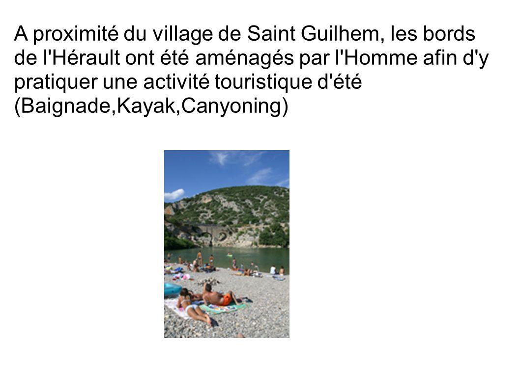 A proximité du village de Saint Guilhem, les bords de l Hérault ont été aménagés par l Homme afin d y pratiquer une activité touristique d été (Baignade,Kayak,Canyoning)