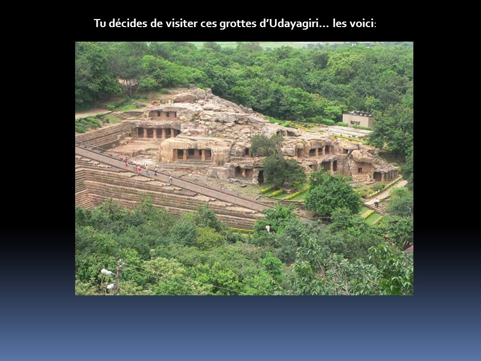 Tu décides de visiter ces grottes d'Udayagiri… les voici: